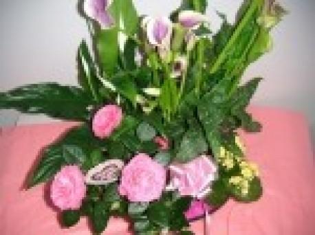 Flowering Plant Arrangement